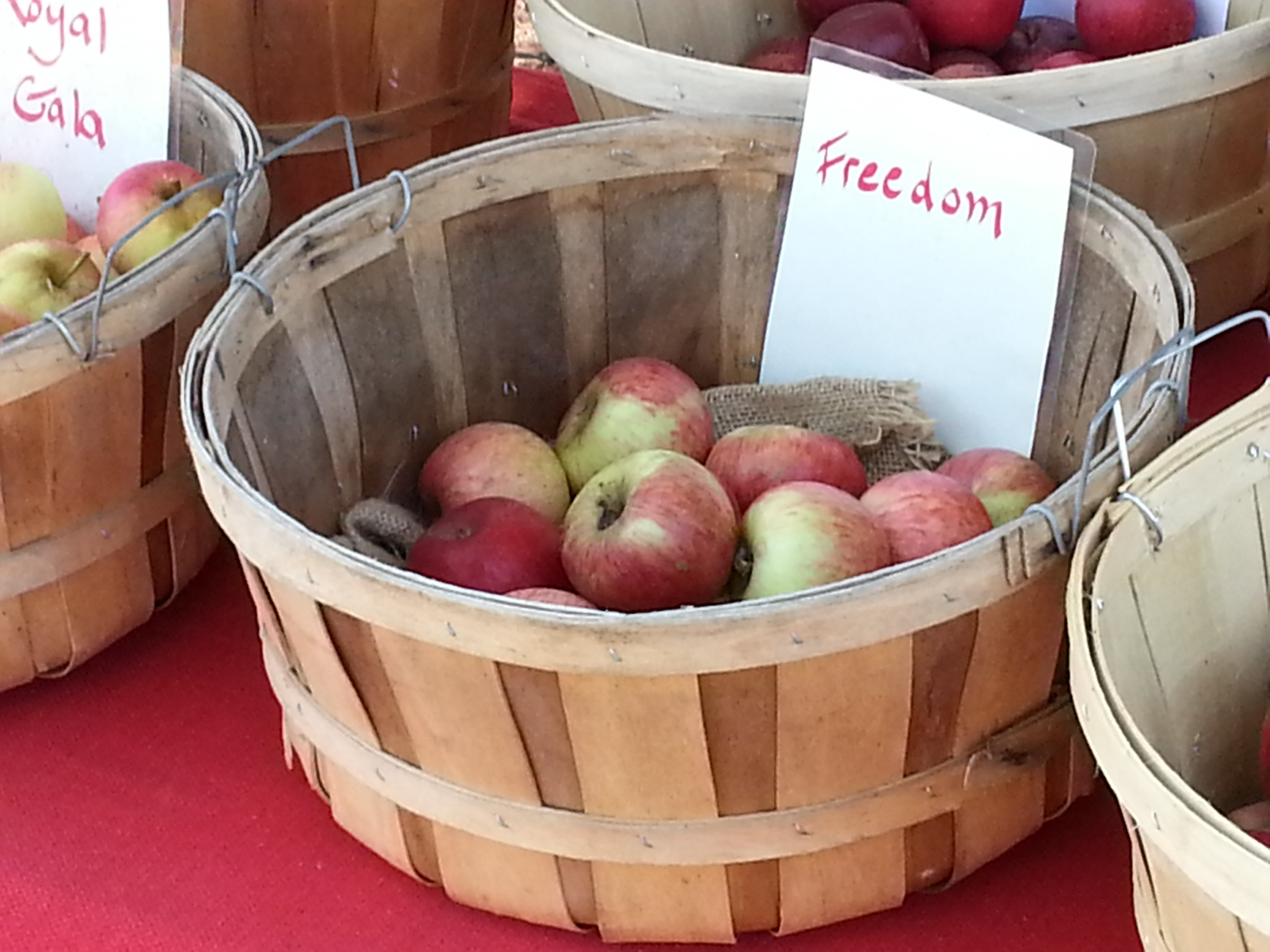 Bushel of Freedom Apples
