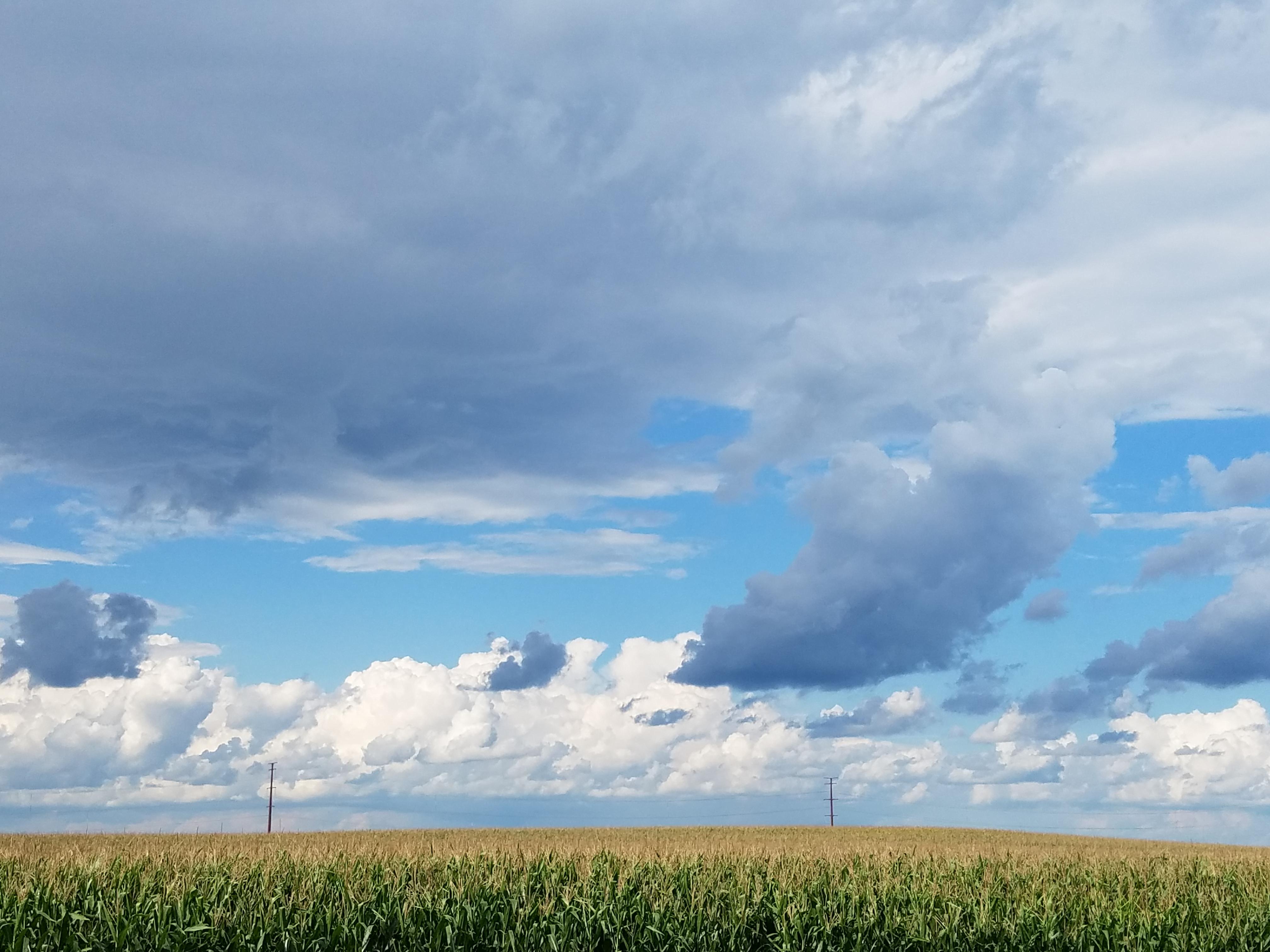 cornfield- cliudscape-0396.jpg