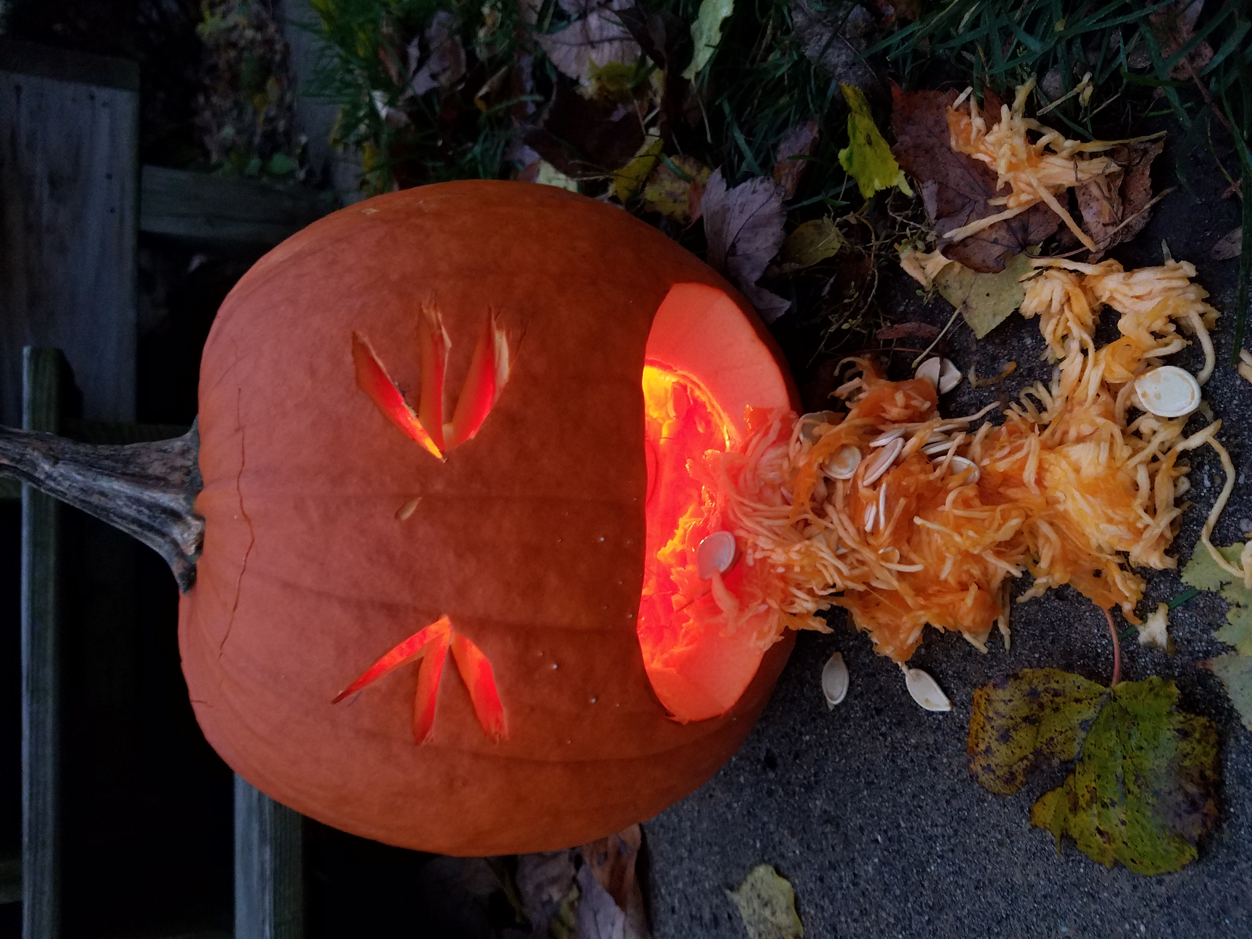 puking-pumpkin-254.jpg