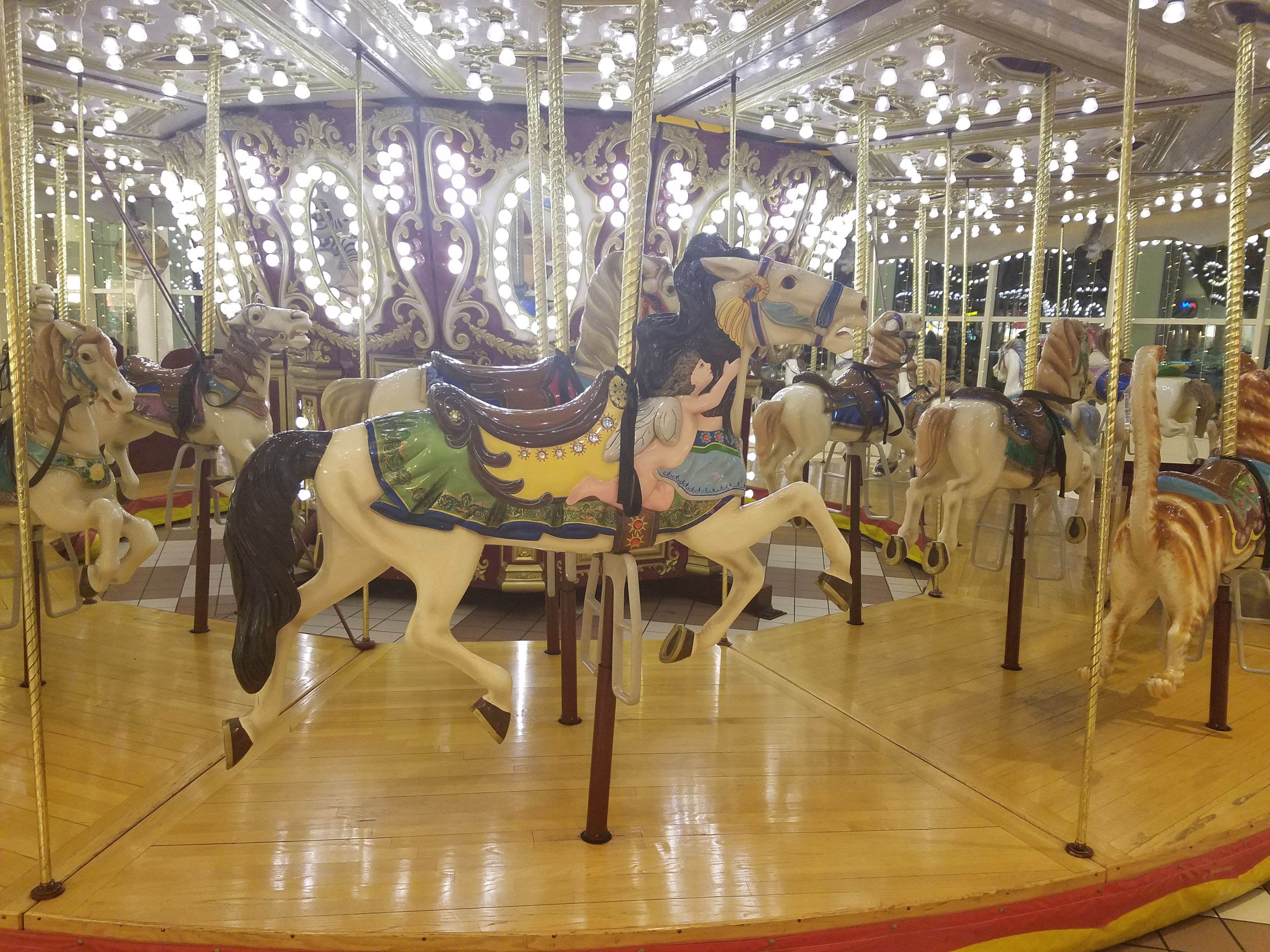 carousel-993.jpg