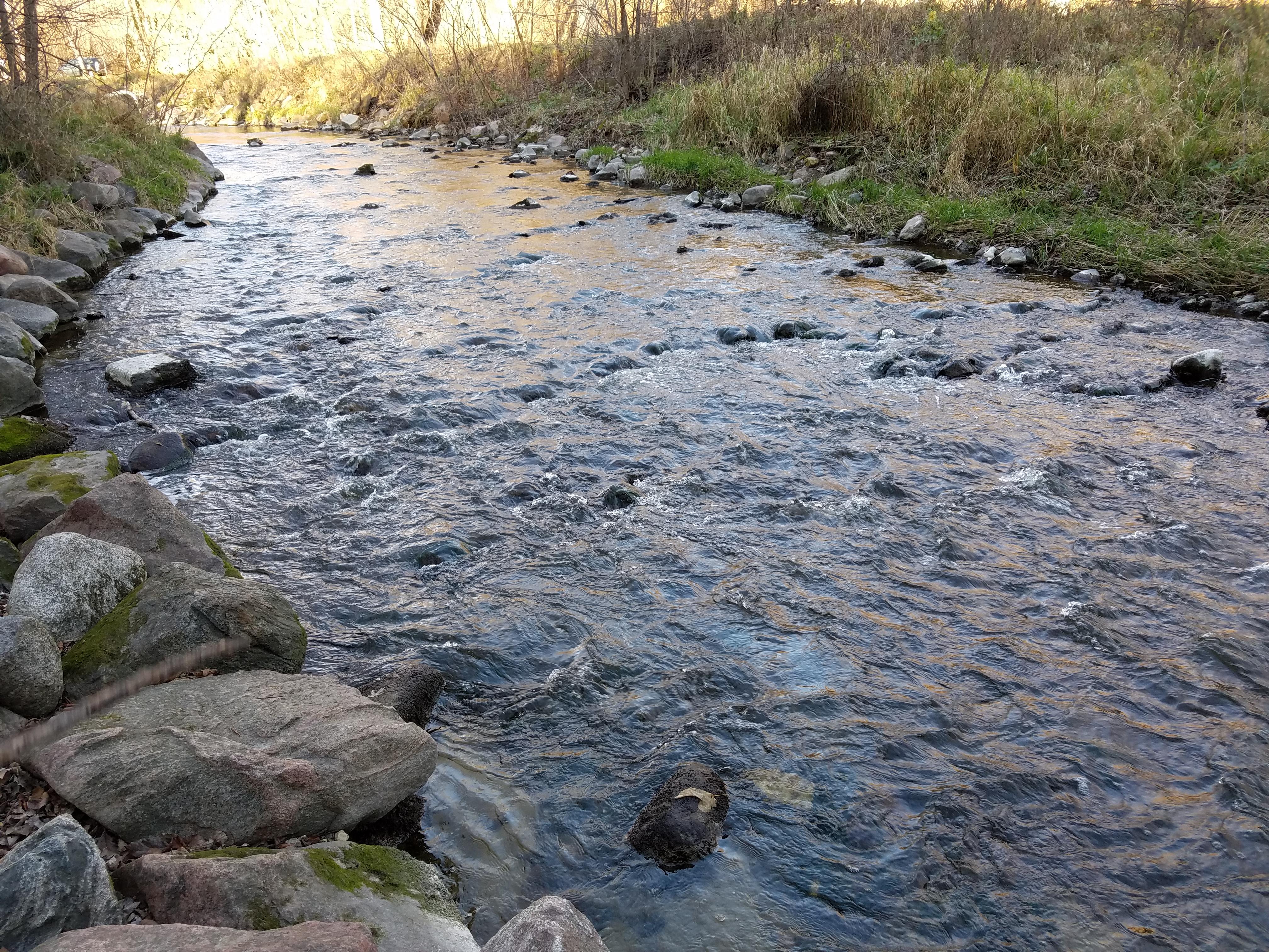 creek-636.jpg